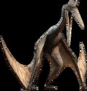 PterosaurWalk
