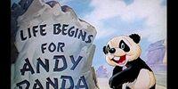 Life Begins for Andy Panda