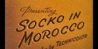 Socko in Morocco
