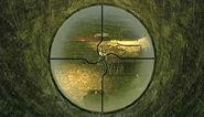 Sniper reticule Act 8