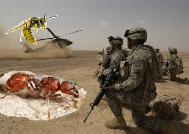 File:Man Vs Insect!.png