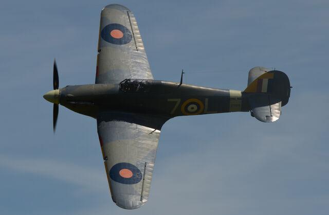 File:Hawker Sea Hurricane.jpeg