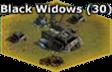 BlackWidow-Base-Lv30-Destroyed