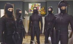 Fox ninjas