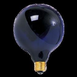 Jerry Garcia's Black Light Bulb
