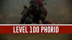 Phorid 'Level 100' (Warframe)