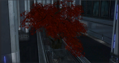 File:CBspringmapletree.png