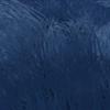 Kavat Draga Blue