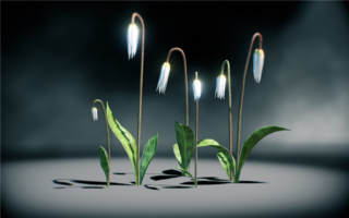 File:Moonlight Dragonlily.png