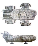 Orca33