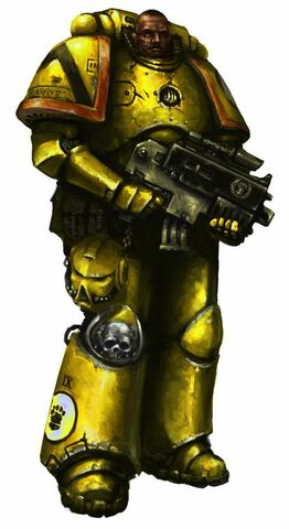 File:Imperial fist with bolter by masteralighieri-d34jirm.jpg