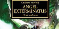 Angel Exterminatus (Novel)