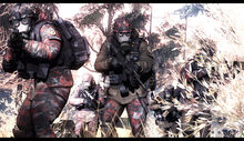 Free Rifles on mission