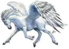 Creature Pegasus.jpg