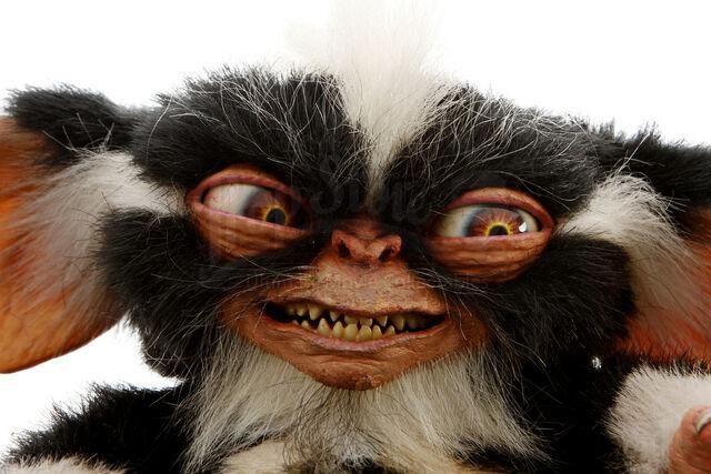 File:Gremlins 2 Mohawk.JPG