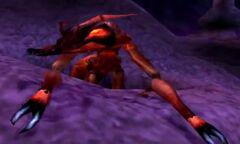 WOTM - Giant Ant 1