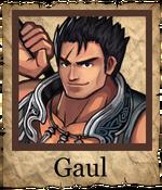 Gaul Spearman Poster