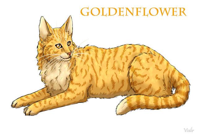 File:Goldenflower by vialir-d6fp22a.jpg