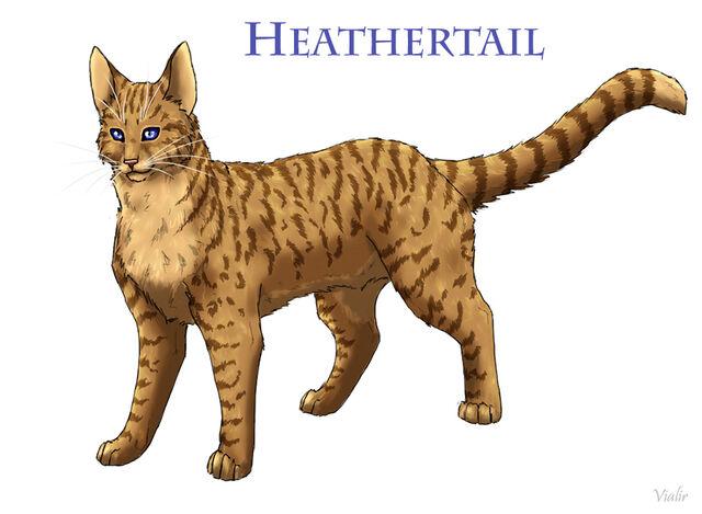 File:Heathertail by vialir-d6ggg4t.jpg
