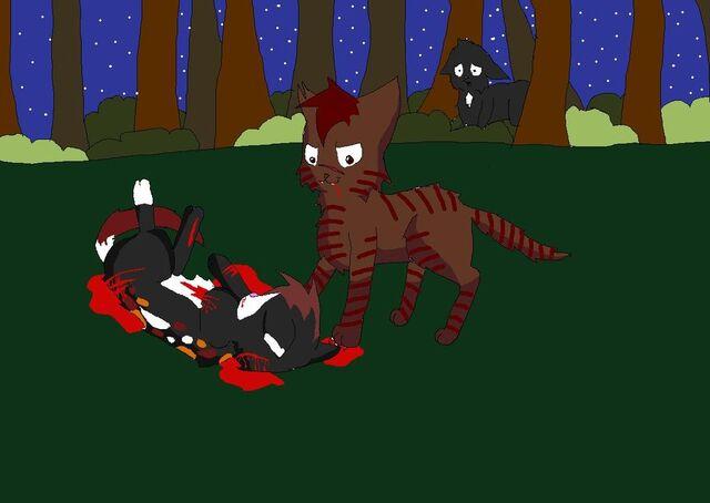 File:Redtail s death by WarriorCatsUnite.jpg
