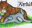 Forbidden: A cat love story