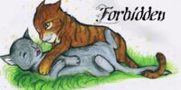 Forbidden: A cat love story