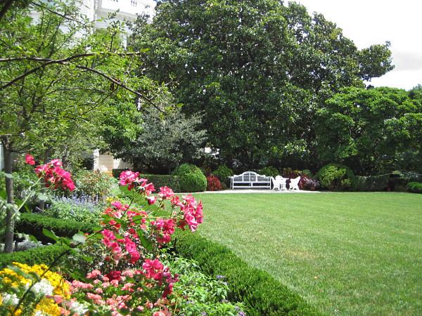 File:Random garden.jpg