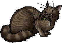 File:Pikepelt.mc.png