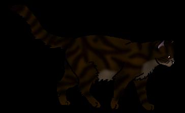 Tigerclaw.warrior