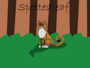Spottedleaf
