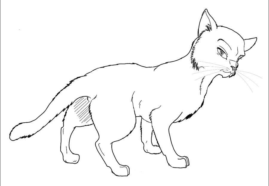 Warrior Cats WikiArt Project Wiki FANDOM Powered By Wikia