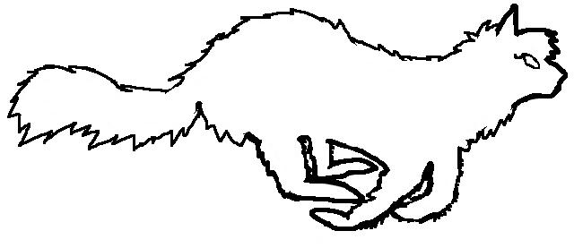 File:Rogue female longhair.png