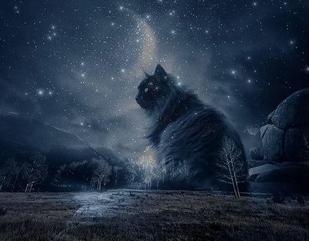 Midnightclan