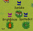 File:Brightsunspotted.png