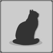 File:Placeholder cat.png