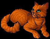 Foxheart.star