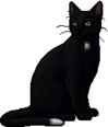 Ravenpaw.warrior