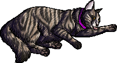 File:Victor.kittypet.png