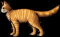 Lioneye.rogue.png