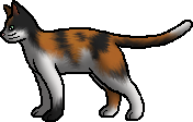 File:Nutmeg (Ro).rogue.png