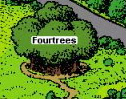 4tree 's.Forest