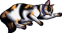 File:Betsy.kittypet.png