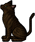 File:Acorntail.warrior.png