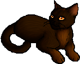 Oakstar Warrior Cats