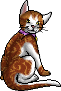 File:Sunny.kittypet.png