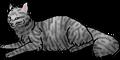 Thumbnail for version as of 17:34, September 5, 2011