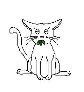Cat-Blank-4