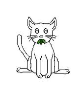 Cat-Blank-13