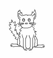 Cat-Blank-28