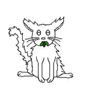 Cat-Blank-19